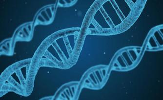 Realidades y ficciones sobre la clonación y otros escritos.