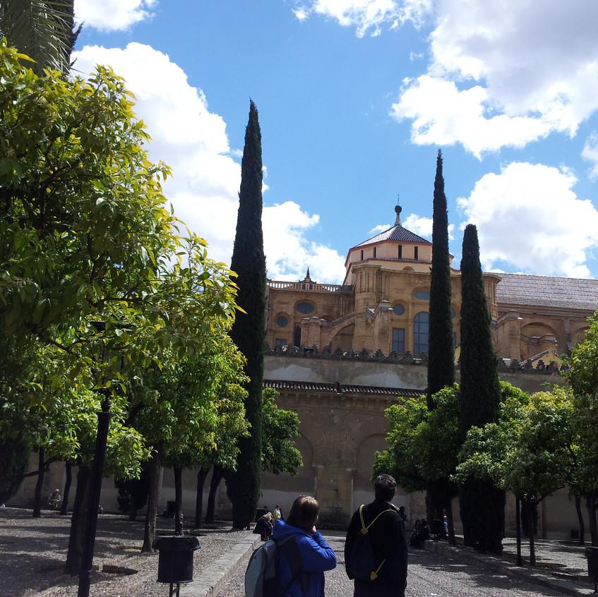 Courtyard_Facing_Mosque