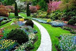 o-que-e-paisagismo-paisagismo-jardim.jpg
