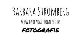 BARBARA_S_INVERTED.jpg