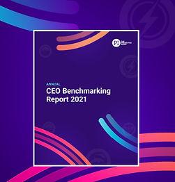 CEO_Report_2021_edited.jpg
