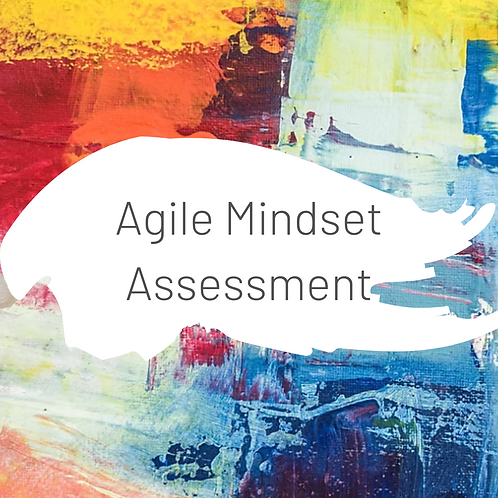 Agile Mindset Assessment
