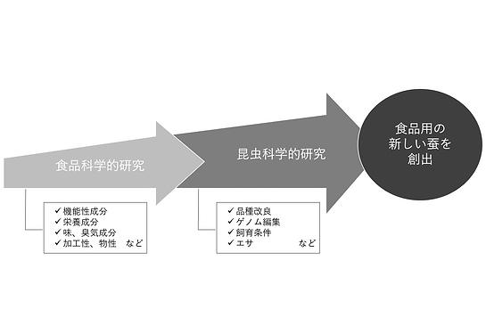 研究イメージ.png