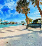 Sarasota1.jpg