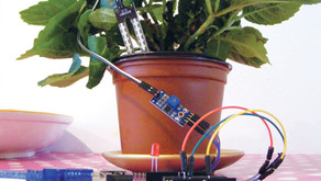 Understand your plant needs with soil moisture sensor 🌱