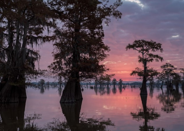 Louisiana Fall workshop 9.jpg