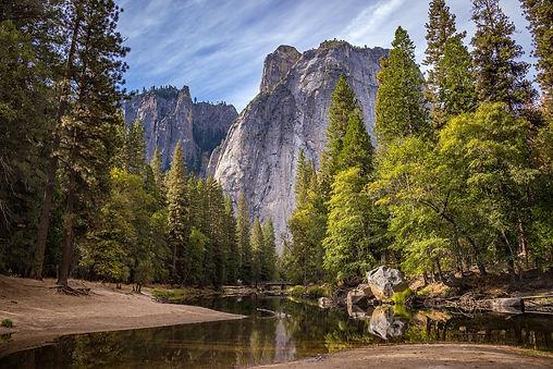 nature-1209302_1920.jpg