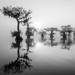 Louisiana Fall (4).jpeg
