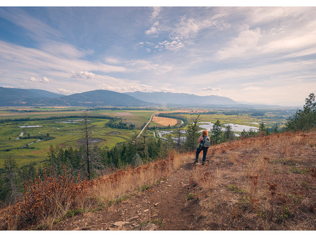 Kootenay Road Trip 2020 Scenes: Hiking in Creston