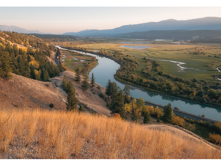 Kootenay Road Trip 2020 Scenes: Golden Light in the Columbia Valley