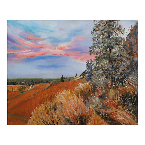 Fall Vineyard Sunrise