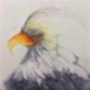 lorie-eagle.jpg