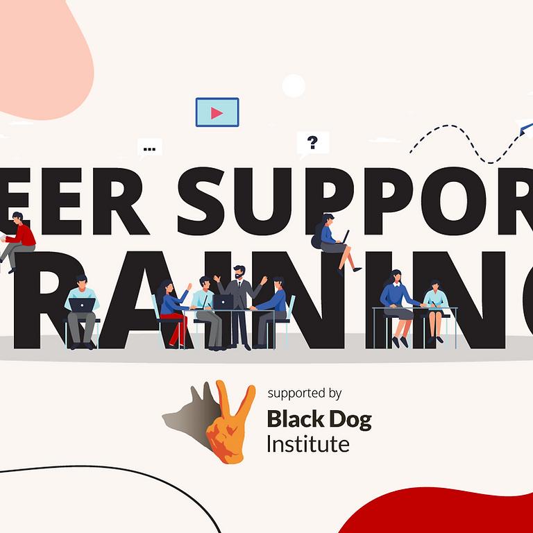 Peer Support Training Workshop