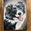 Thumbnail: Acrylic Pet Portrait