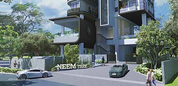neem-tree-gallery-02-e1491330374406.jpg