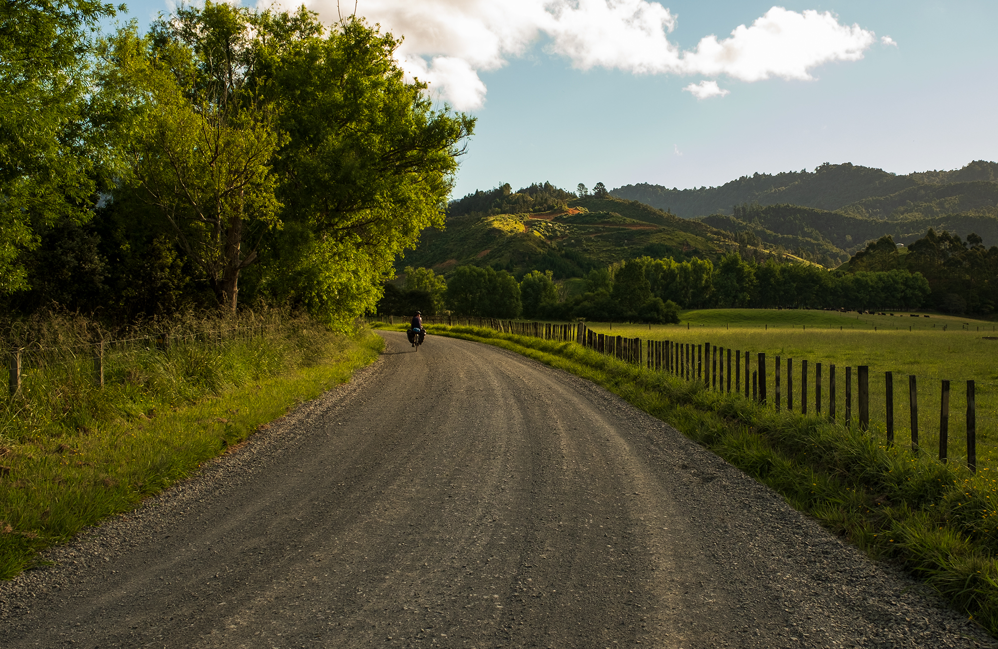 New Zealand Backroad