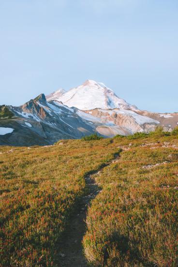Mt Baker Trail.jpg