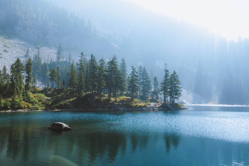 Cascade Trees.jpg
