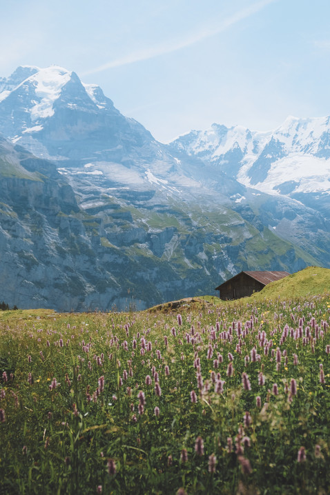 Swiss Alpine Hut.jpg