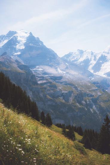 Swiss Hill.jpg