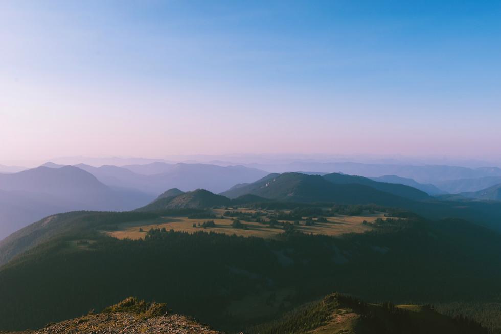 The Plateau.jpg