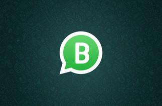 E-commerce e o WhatsApp Business: tendência e excelência em vendas?