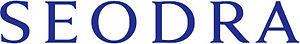 seodra logo blue.jpg