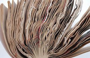 tabb - book24.jpg
