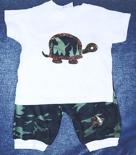 Turtle set. MeSh_edited.jpg