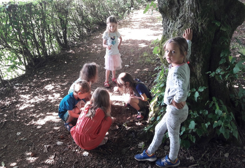 mercredi forêt (3)