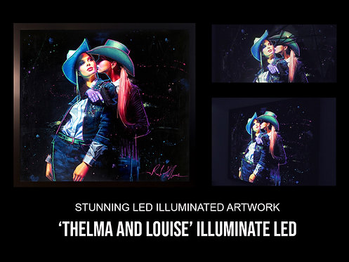 'Thelma And Louise'  Stunning LED Illuminated Art Work