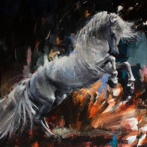 Equestrian 006