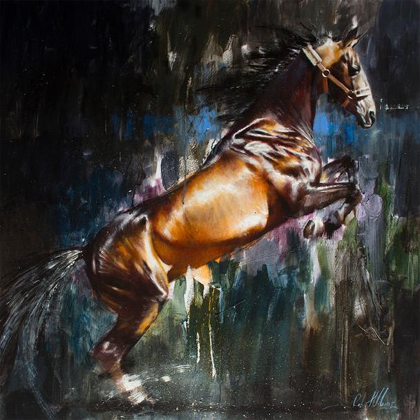 Equestrian 008