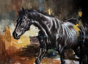 Equestrian 002