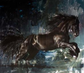 Equestrian 004