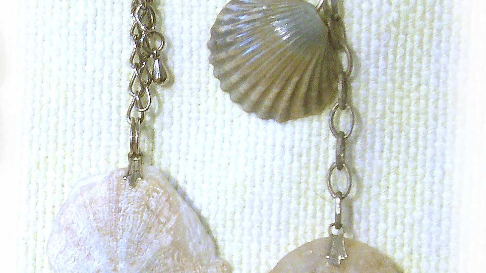 Earrings Sea-shells