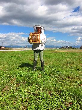 """女性養蜂家が作る生ハチミツ""""貴和蜜"""""""