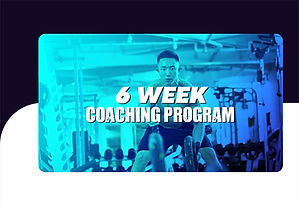 Six week online personal training from Ask a Fit Guy in the bay area
