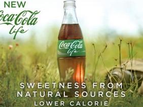 GREENWASHING.....Small Eco Companies facing BIG Nightmares!!!