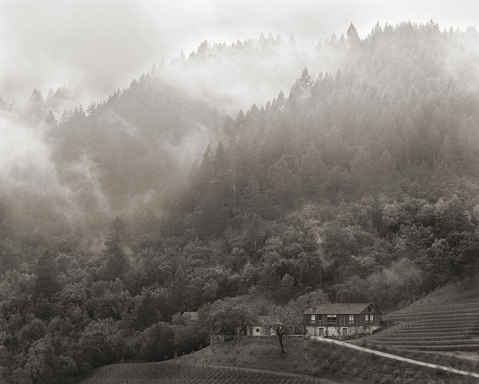 BOND-Winter-Repose-2010.jpg