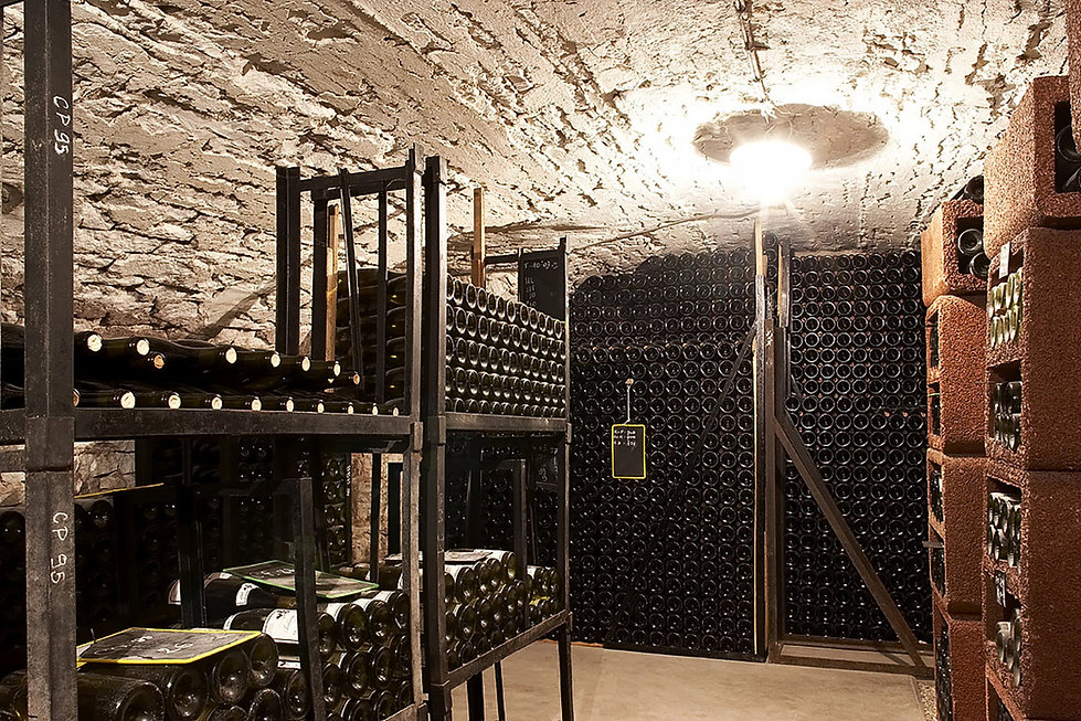 cellar-with-ancient-vaulted-roof-moyen.j