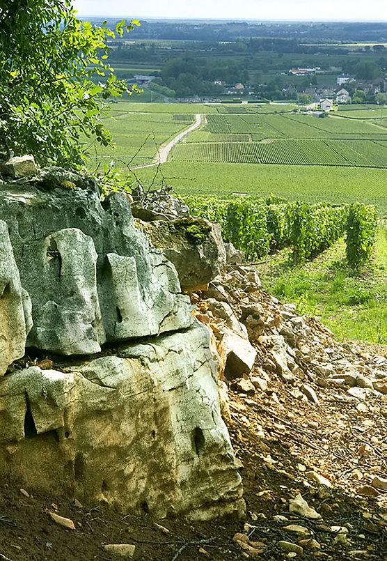 view-from-chevalier-mt-towards-batard-an