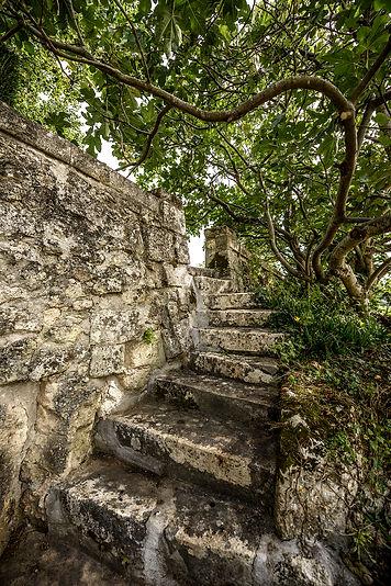 TR 3a-Escalier vers vigne, Leif Carlsson