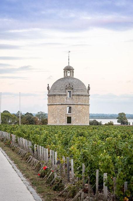 Chateau Latour 3.JPG
