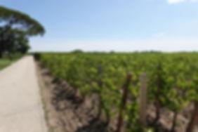 Cheval Blanc 17.JPG