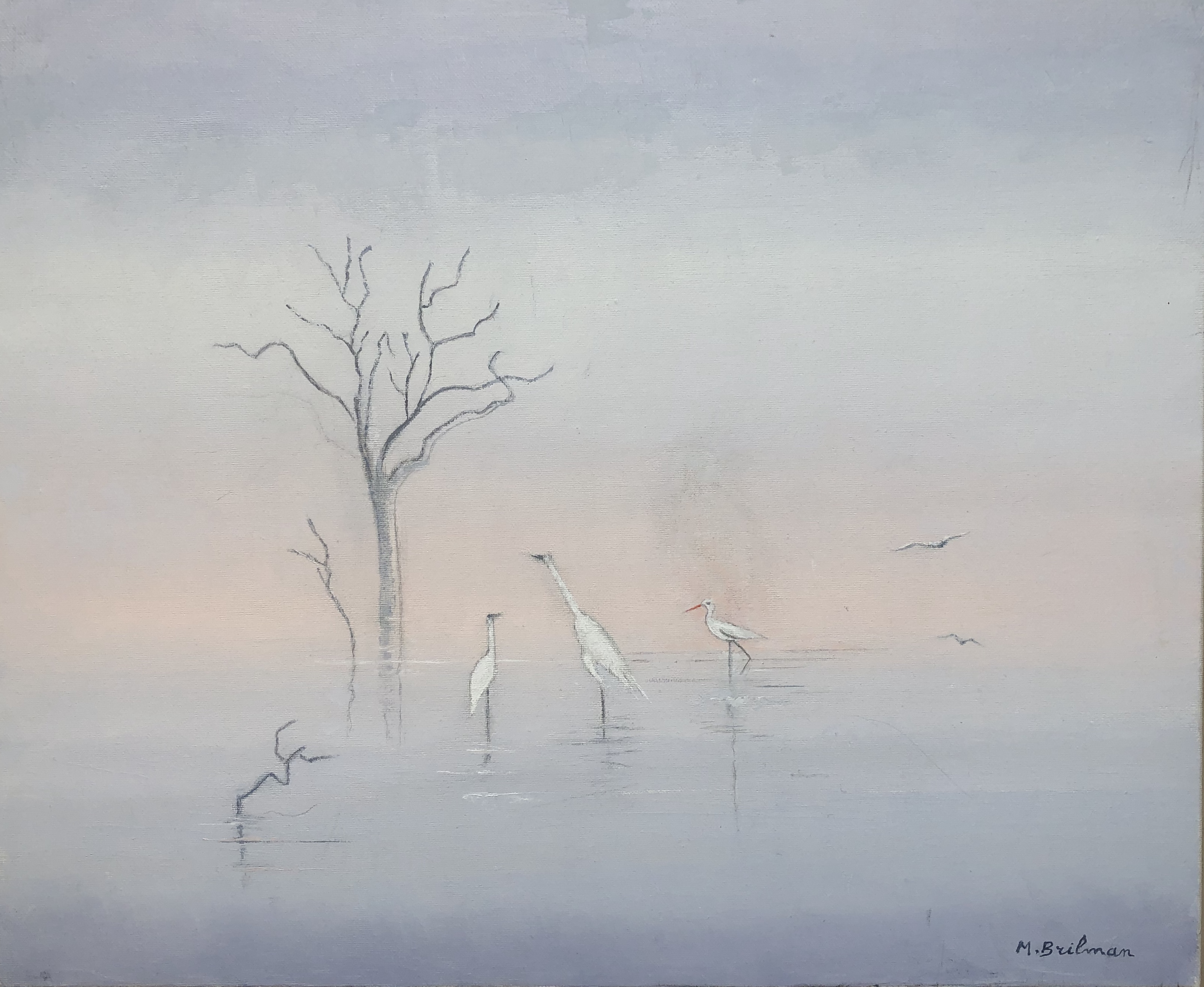 Birds in Tangalé