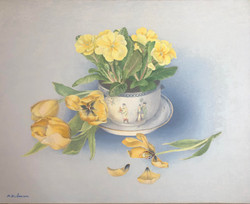 Primroses and tulips