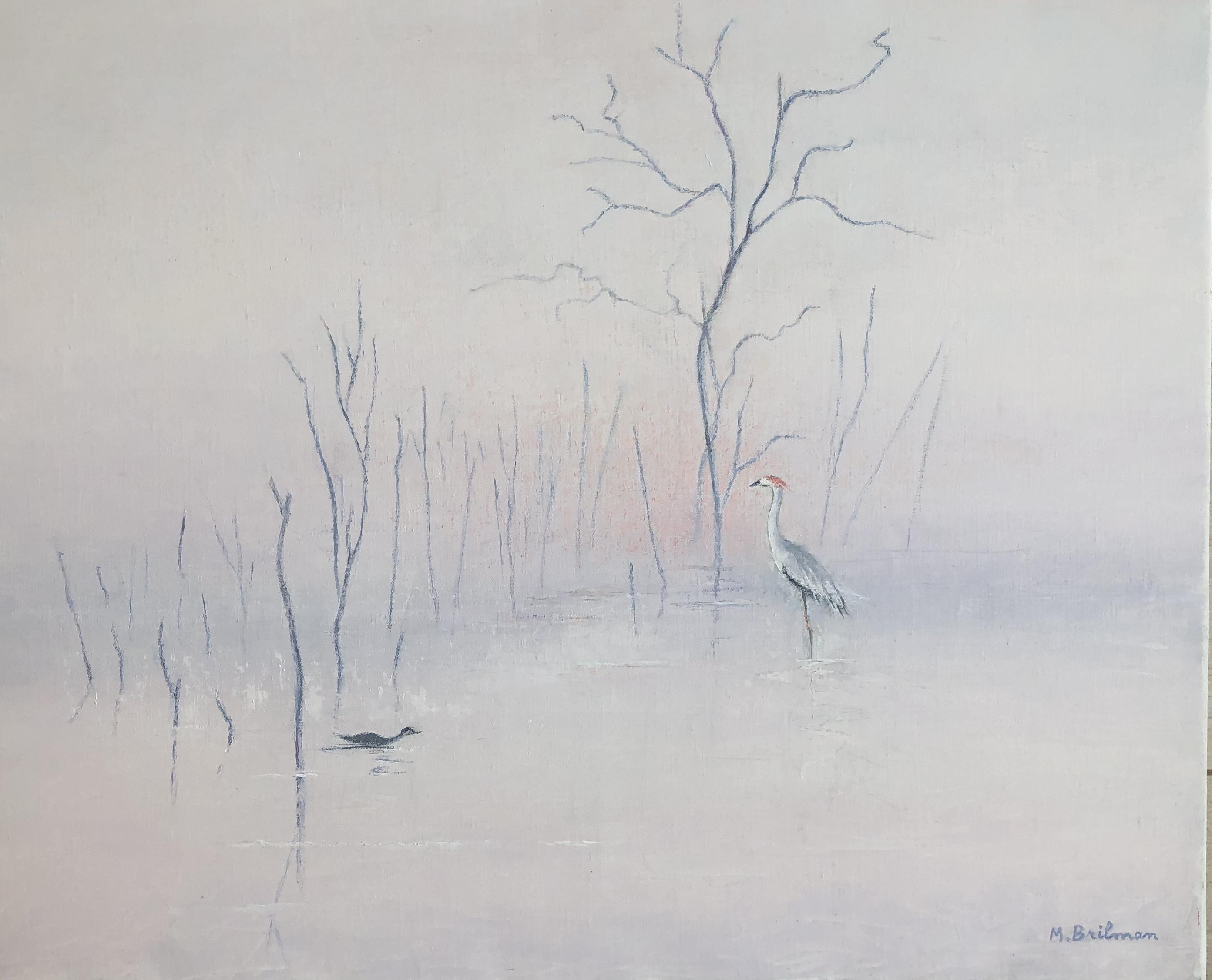 Egrets in Ceylan