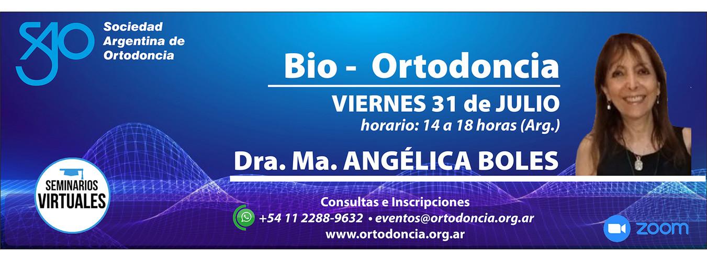 Seminario virtual Dra. Boles