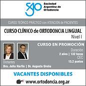 Curso_Dra._Harfin_Ureña_nivel_I.jpg